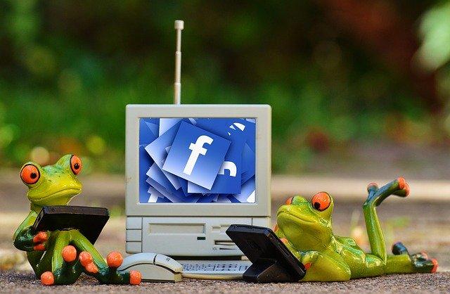 grenouille facebook